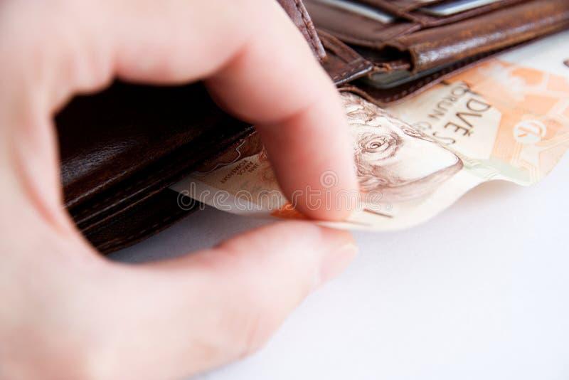 Bankbiljetten in portefeuille stock fotografie