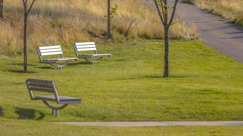 Banken op een park met een weg door zonlicht wordt aangestoken dat stock fotografie