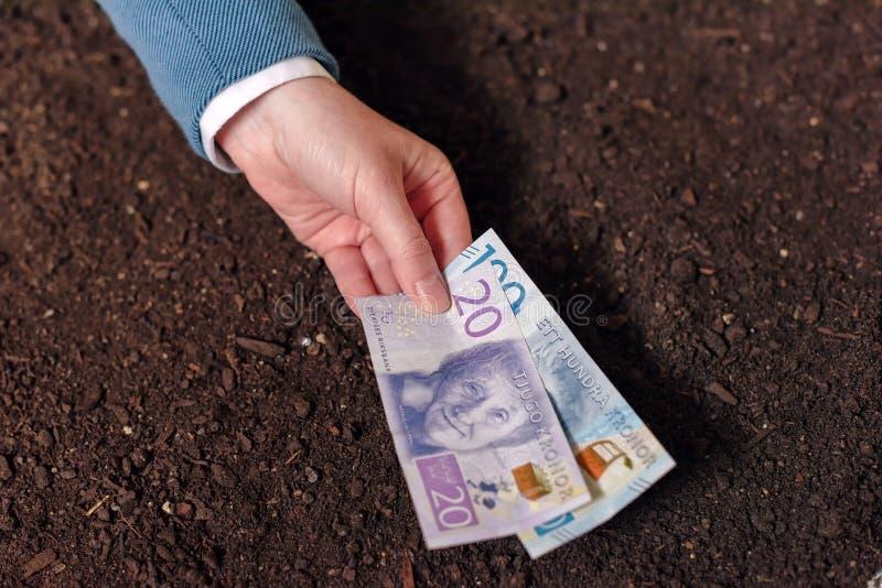 Banklening in Zweedse munt voor landbouwindustrieopstarten en debel royalty-vrije stock afbeelding