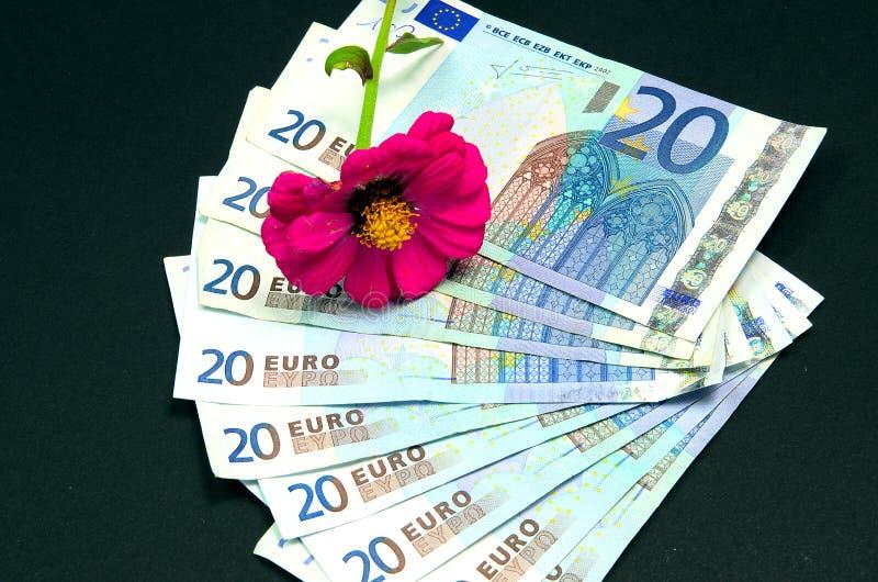 Banknote des Euros zwanzig lizenzfreies stockbild