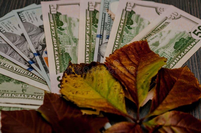 Banknoten werden zusammen in die verschiedenen Positionen eingesetzt, benannt in den Dollar lizenzfreie stockfotos