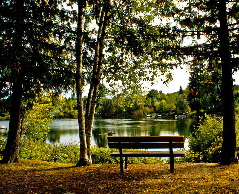 On the Banks of the Cowichan River royalty free stock photo