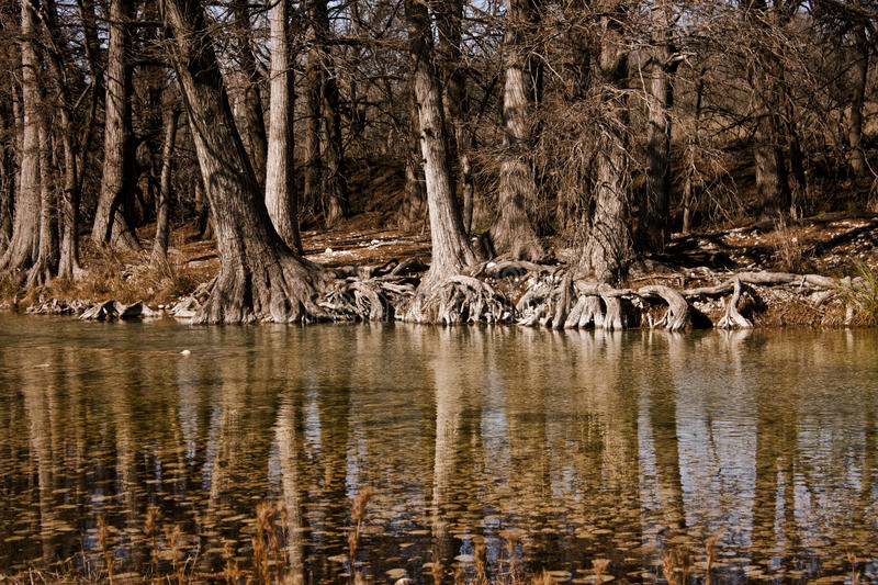 Banks of the Frio river stock photography
