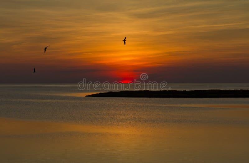 banks ytterkant solnedgång arkivbilder
