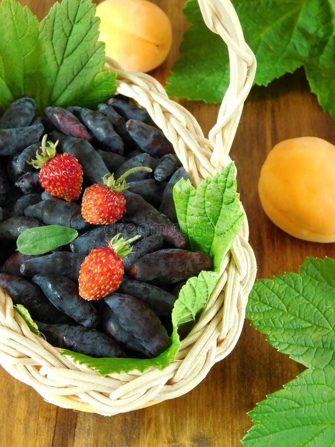 Banksje i truskawki w łozinowym koszu zdjęcie stock