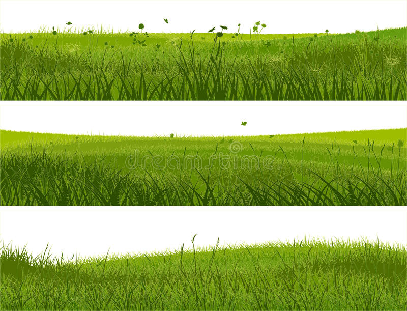 Download Banner Of Abstract Meadow Grass. Stock Vector - Image: 32485713