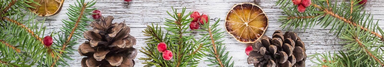 banner of Christmas branches with cones viburnum berries and dry lemon slice stock image