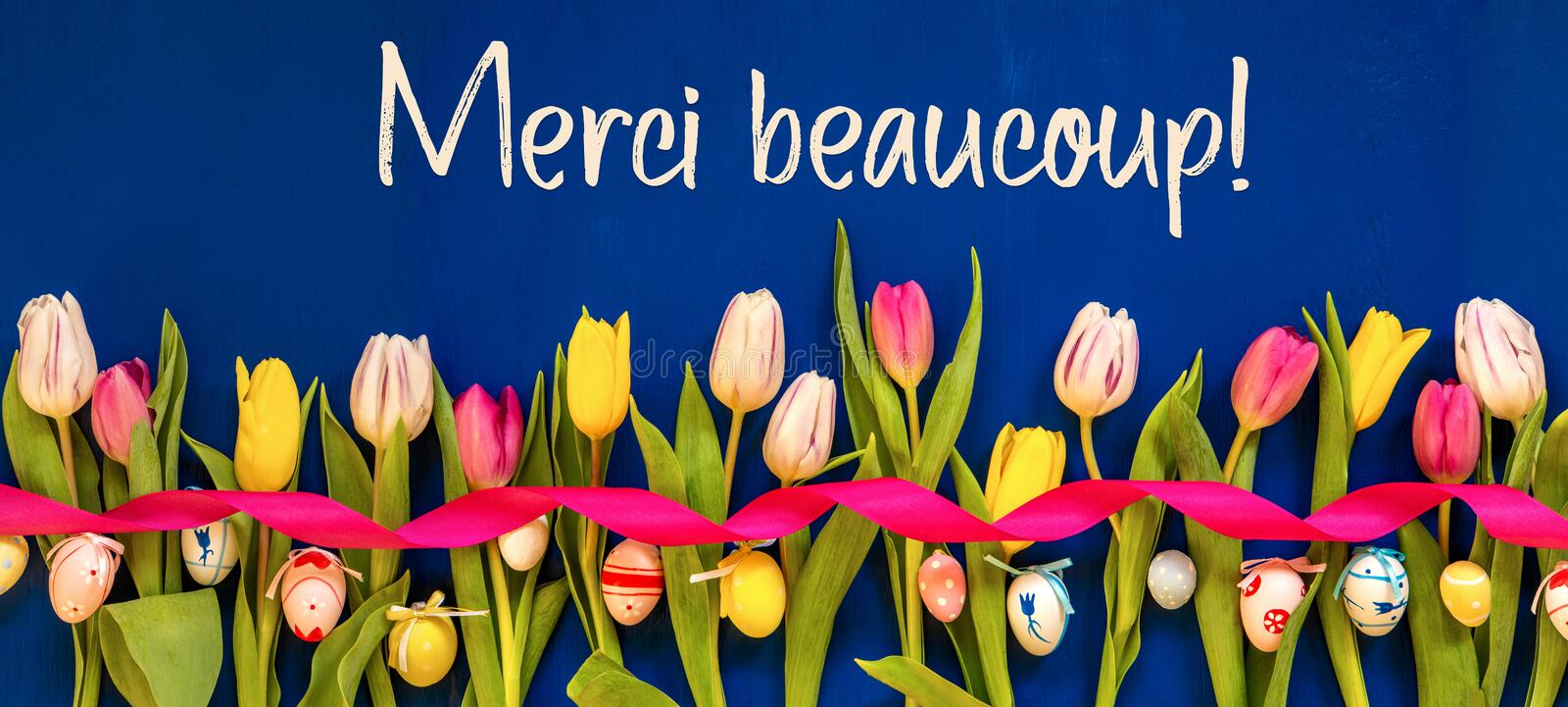 Banner With Colorful Tulip, Merci Beaucoup Means Thank You, Easter Egg. French Text Merci Beaucoup Means Thank You. Banner Of White And Pink Tulip Spring Flowers stock photography