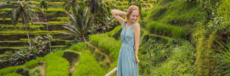 BANNER, de LANGE gang van de FORMAAT Mooie jonge vrouw bij typische Aziatische helling met rijst die, de groene cascade van de be royalty-vrije stock foto's