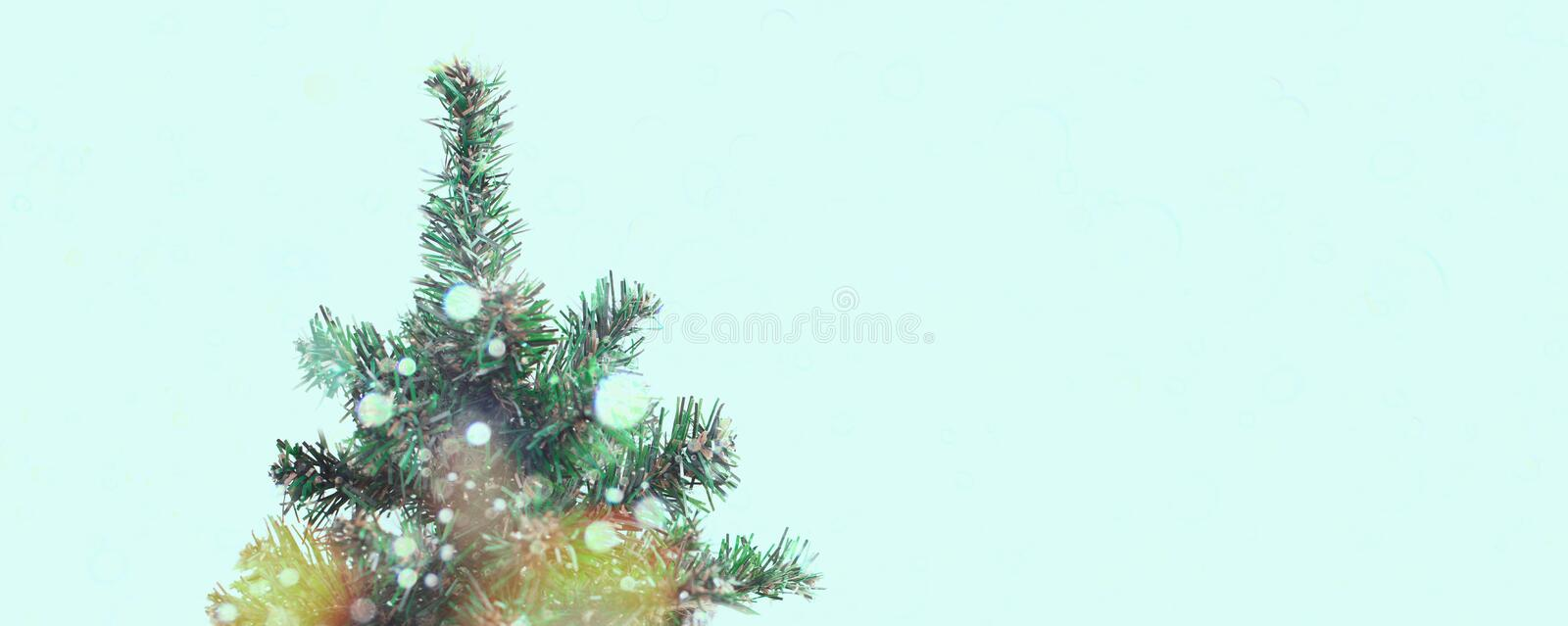 Banner Decorative Christmas tree in a pot. stock photo
