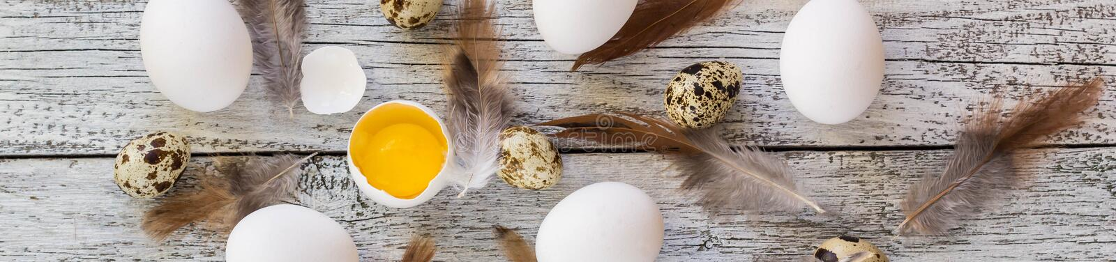 Banner of easter eggs and feathers background, food top view. Banner of easter eggs and feathers background on white wooden, food top view stock photos