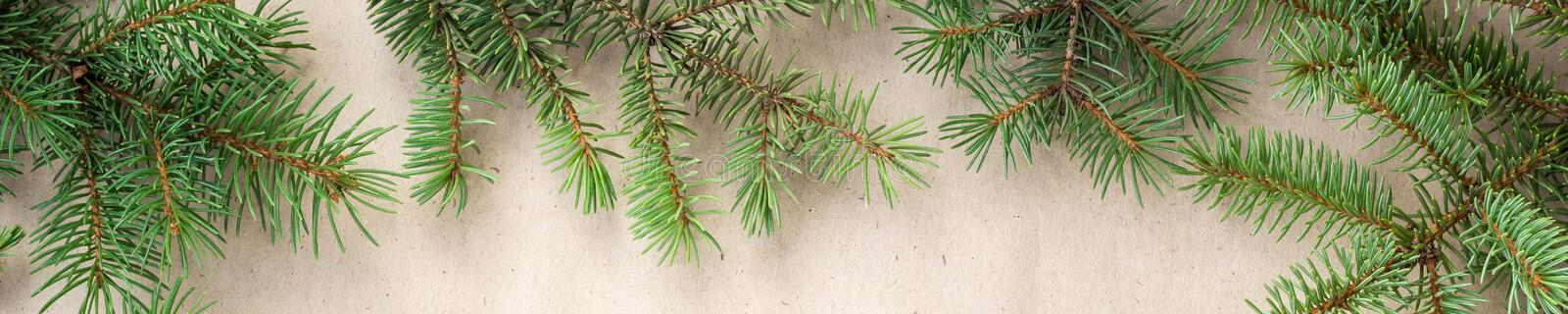 Banner of fir branches border on light rustic background, good for christmas backdrop.  royalty free stock photo
