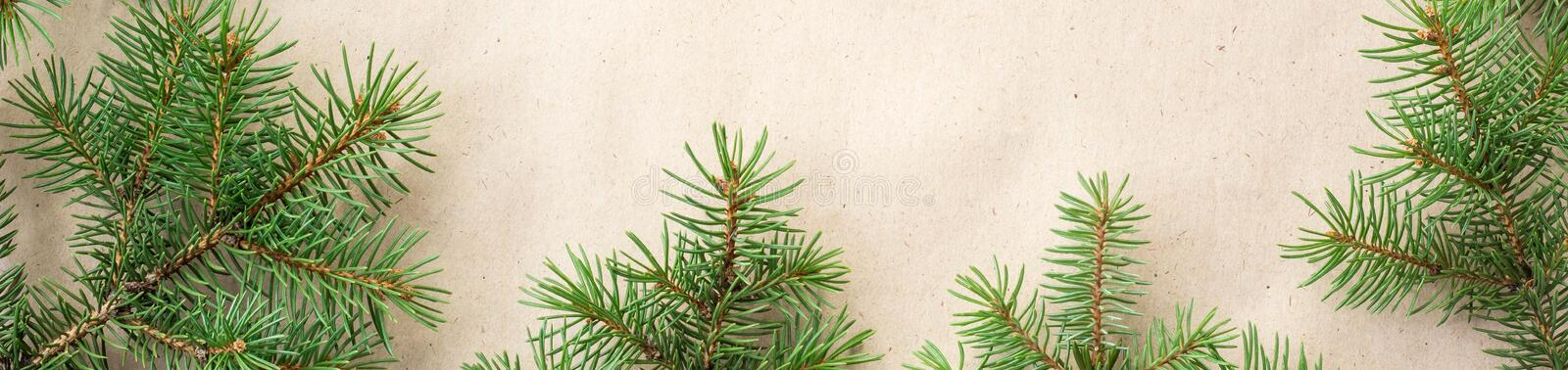 banner of fir branches border on light rustic background, good for christmas backdrop royalty free stock image