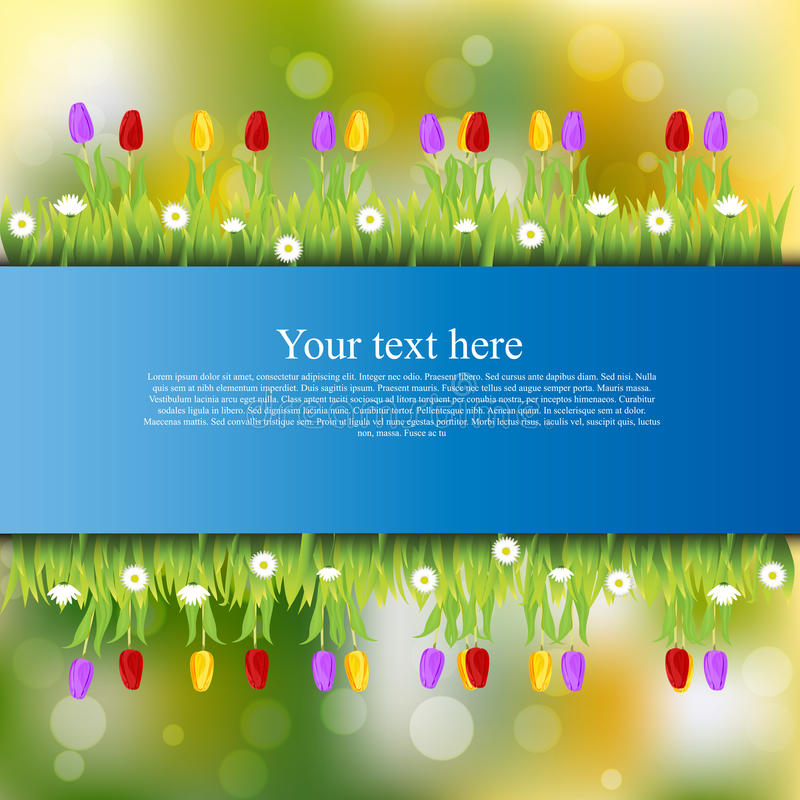 Banner with grass and flowers. Very high quality original trendy banner with grass, flowers, chamomile, Tulip royalty free illustration