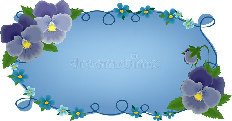 Banner or greetings card with pansies vector illustration