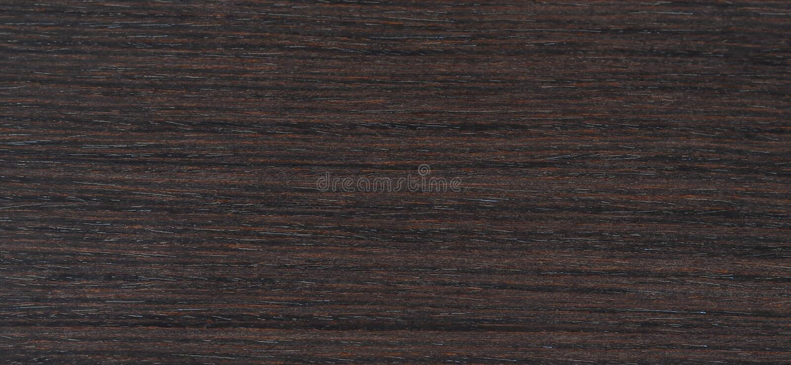 Banner of Horizontal The texture of the wood. Flooring. pine royalty free stock photos