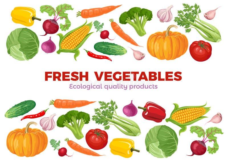 Banner met groenten op witte achtergrond royalty-vrije illustratie