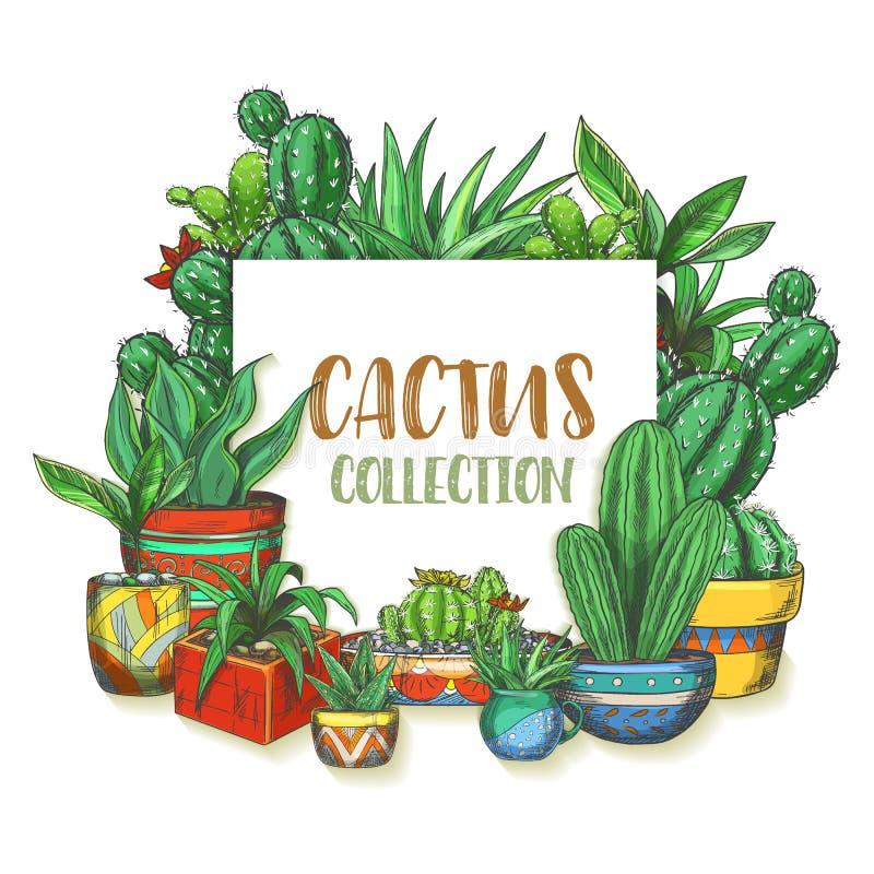 Banner met hand getrokken cactus in dozen, installaties stock illustratie