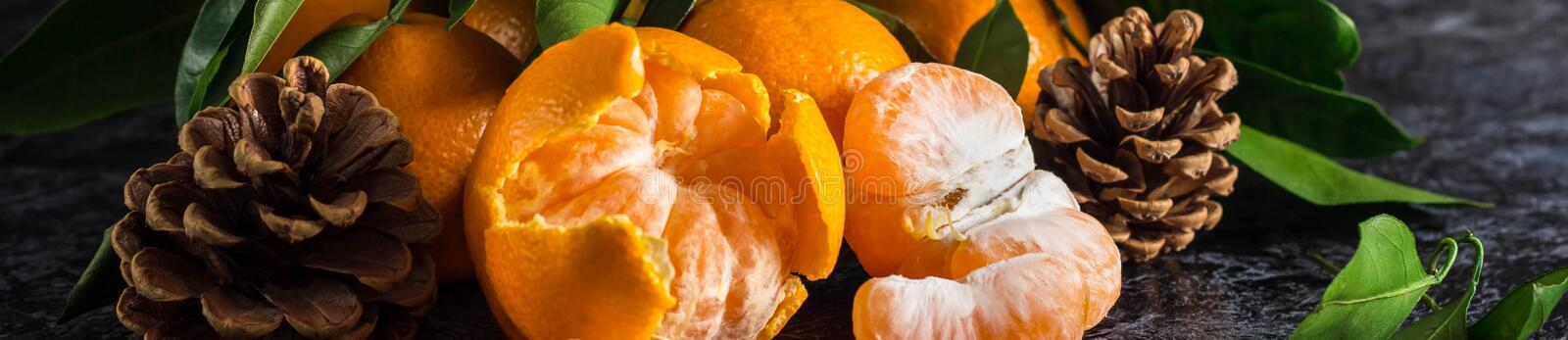 Banner of orange tangerines with green leaves on dark background. Peeled mandarin slices and cones royalty free stock photos