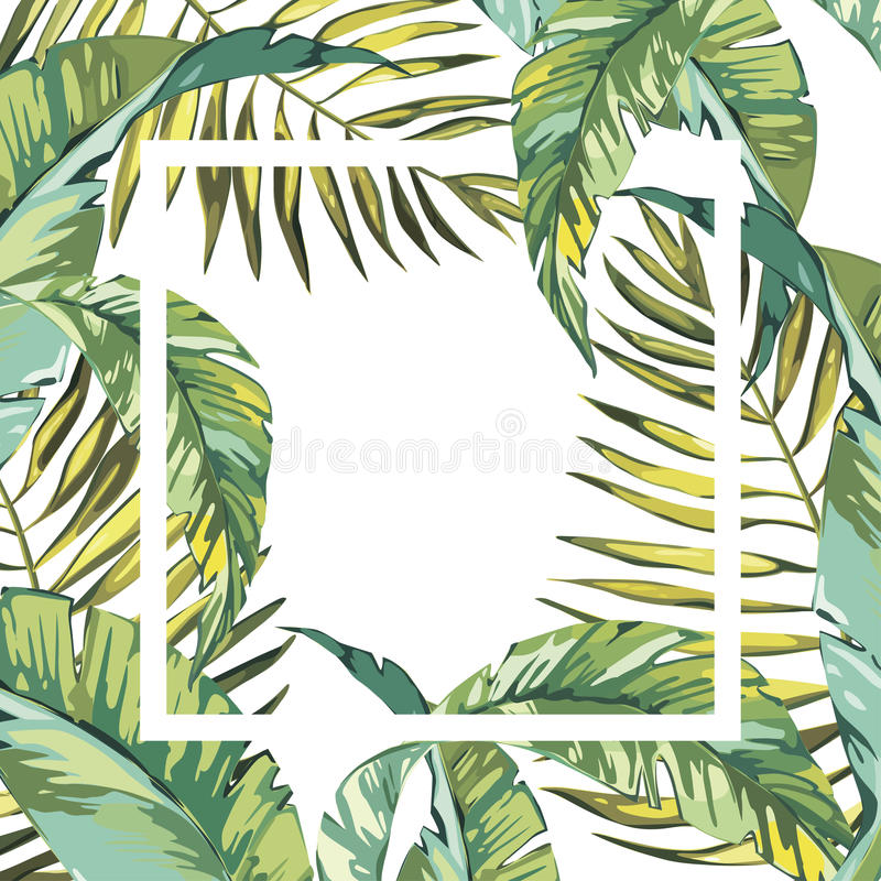 Banner, poster with palm leaves, jungle leaf. Beautiful vector floral tropical summer background. EPS 10 royalty free illustration