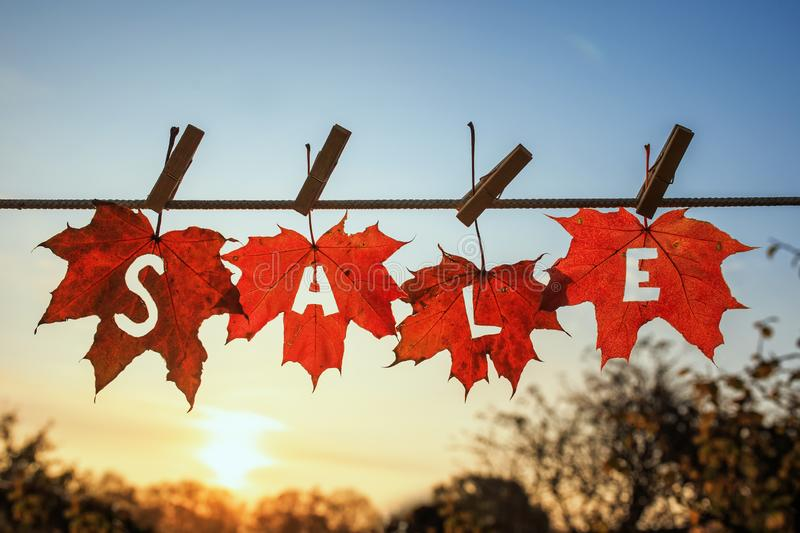 Banner sign with the words sale carved on multicolored maple leaves hangs on a rope with clothespins in a Sunny garden against a. Sunset stock photo