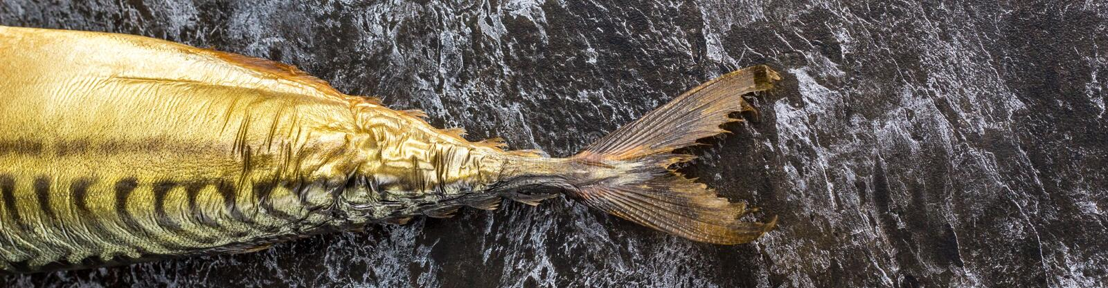 Banner of Smoked mackerel without head on black background. copyspace top view royalty free stock images