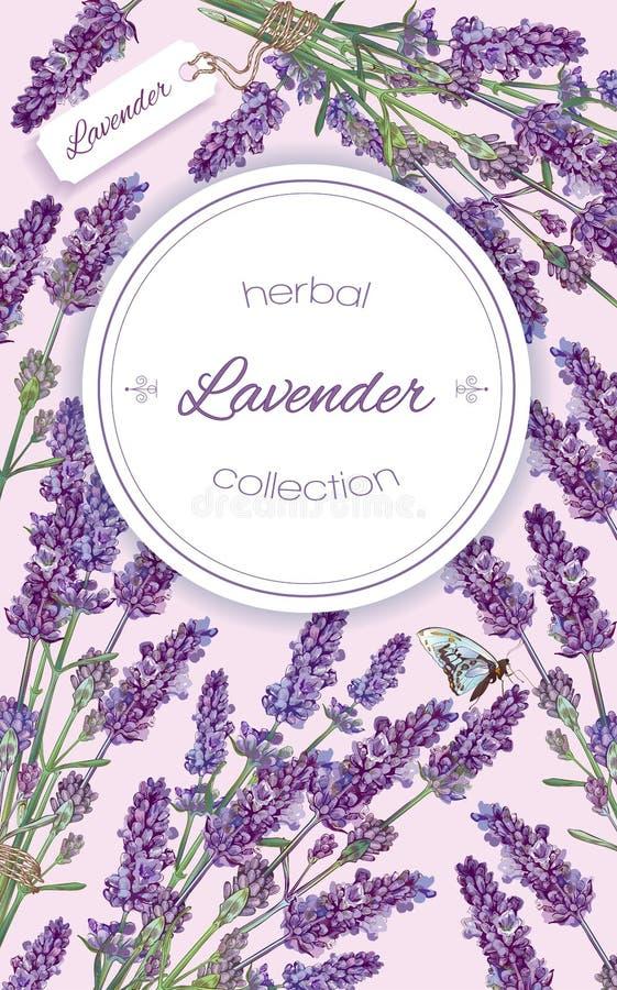 Banner van lavendel de natuurlijke schoonheidsmiddelen royalty-vrije illustratie
