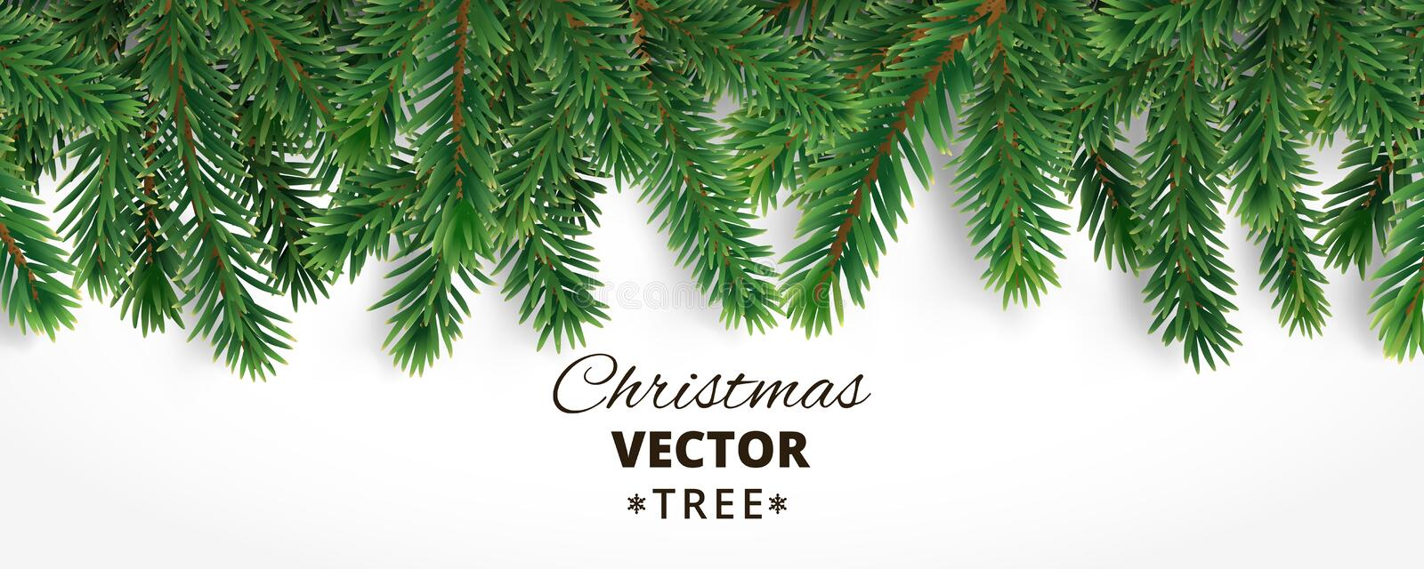 Banner with vector christmas tree branches and space for text. R vector illustration