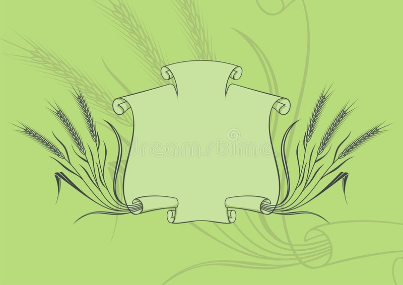 Download Banner with wheat green stock vector. Illustration of drawing - 4667204