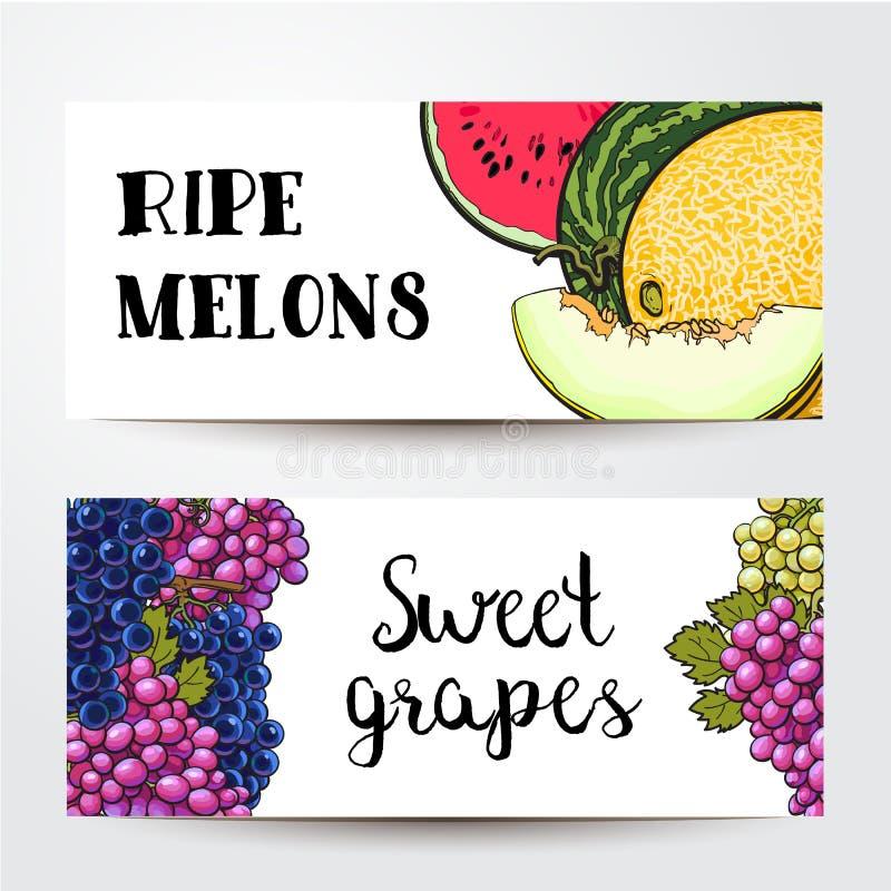 Banners van druiven en meloen, watermeloen met plaats voor tekst stock illustratie