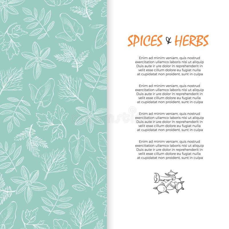 Bannière d'épice et d'herbes - la main a esquissé le fond culinaire et de médecine d'herbes illustration libre de droits