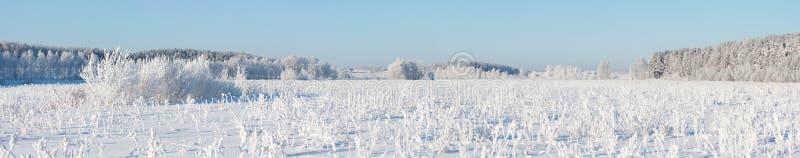 Bannière d'hiver photo libre de droits