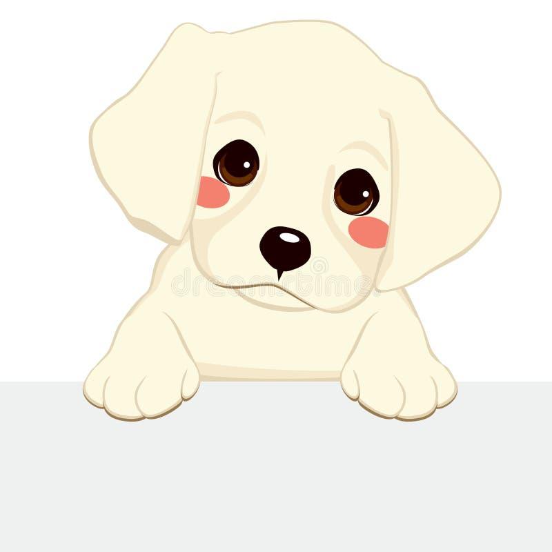 Bannière de chiot de Labrador illustration libre de droits