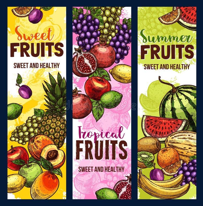 Bannière de fruit et de baie d'usine tropicale ou de jardin illustration stock