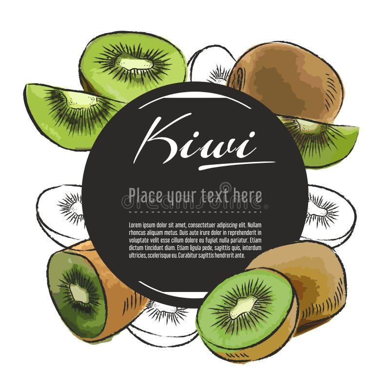 Bannière de kiwi de croquis de vecteur sur le fond blanc Avec l'endroit pour le texte Conception graphique de fruit tiré par la m illustration stock