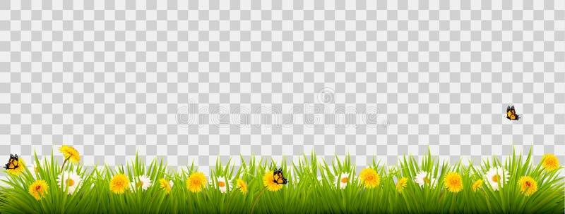 Bannière de paysage de nature d'été avec des fleurs et des papillons illustration de vecteur