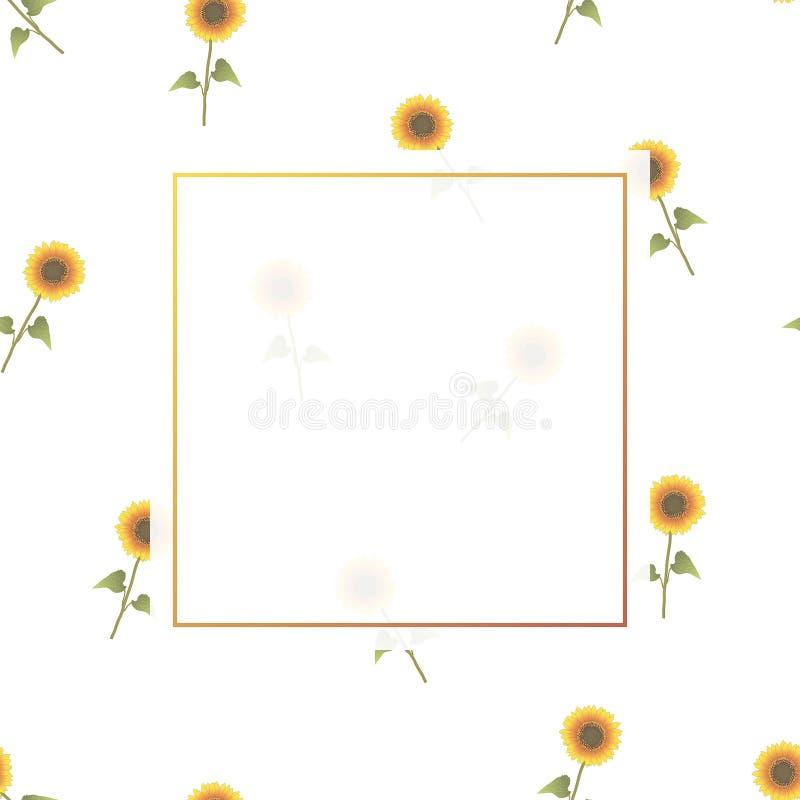 Bannière de tournesol sur le fond blanc image stock