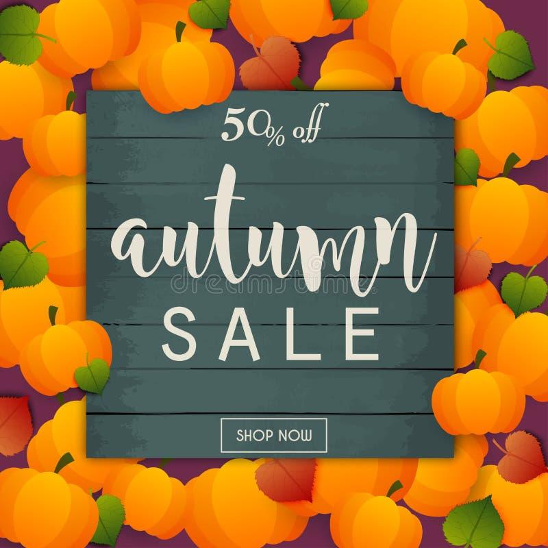 Bannière de vente d'automne Affiche, insecte, vecteur Potirons et feuilles dessus illustration libre de droits