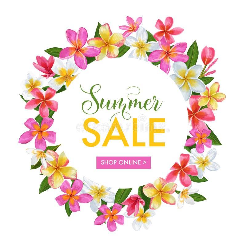 Bannière florale de vente d'été La publicité saisonnière de remise avec les fleurs roses de Plumeria Ressort tropical de paradis illustration de vecteur