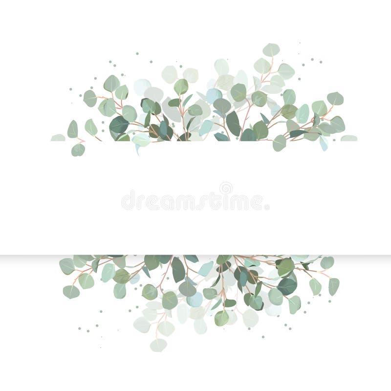Bannière horizontale de conception de vecteur d'eucalyptus de mariage illustration de vecteur