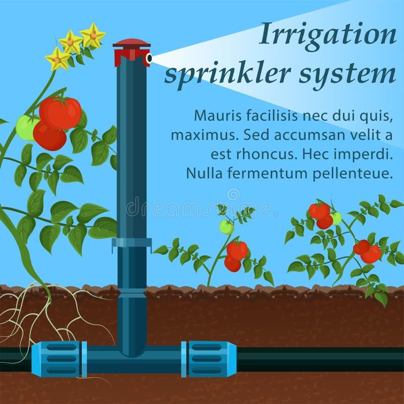 Bannière marquant avec des lettres le système d'arrosage d'irrigation illustration de vecteur