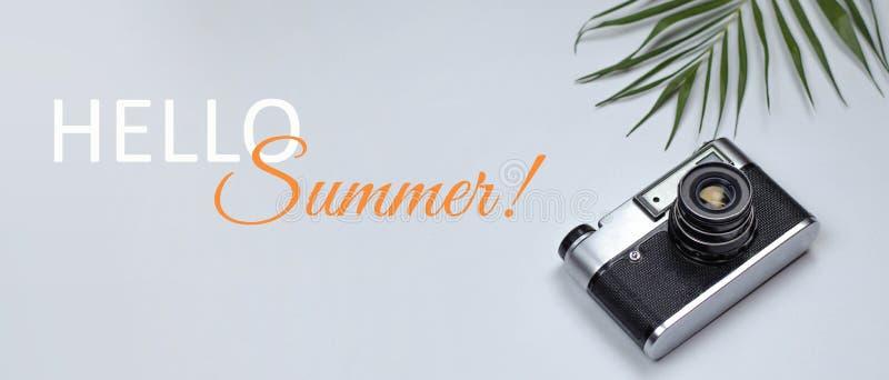 Bannière pour l'été de site bonjour avec une caméra et une branche des palmiers image libre de droits