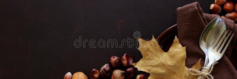 Bannière pour le Web Vaisselle, noix, noisettes, châtaignes et glands sur le fond en bois foncé image libre de droits