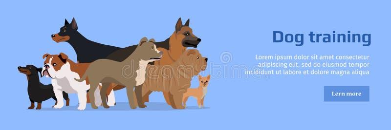 Bannière professionnelle de service formation de chien illustration de vecteur