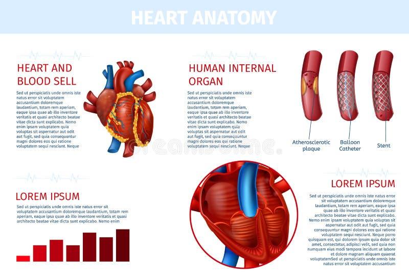 Bannière réaliste de thérapie cellulaire interne de sang de coeur illustration libre de droits
