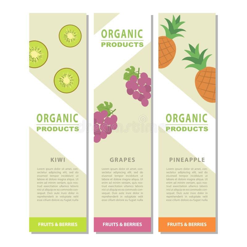 Bannière verticale de conception de calibre avec le décor du fruit illustration stock