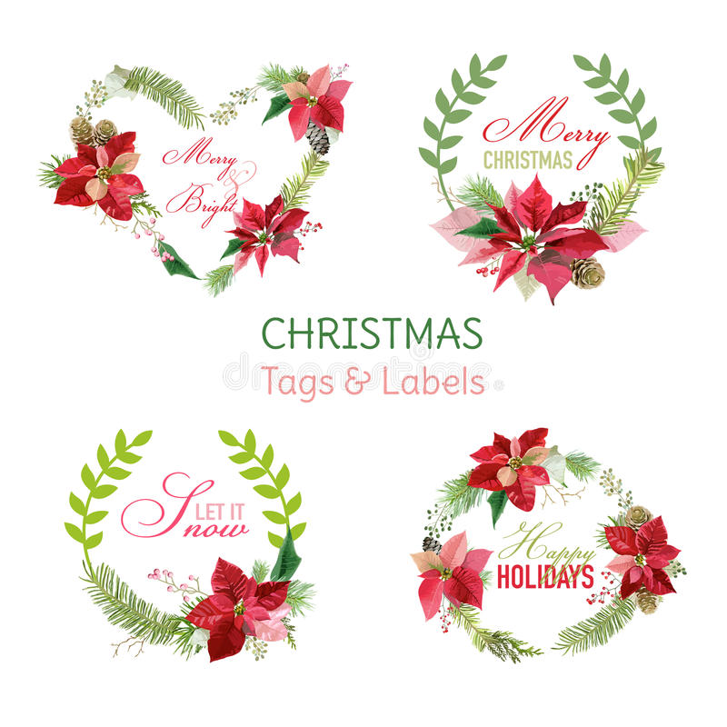 Bannières de fleurs de poinsettia de Noël et étiquettes - ensemble d'hiver illustration stock