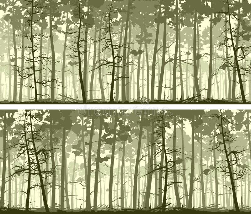 Bannières larges horizontales de bois conifére illustration stock
