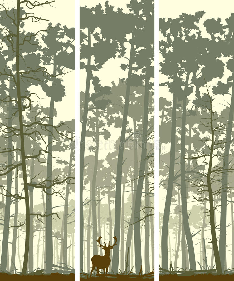 Bannières verticales des cerfs communs en bois conifére. illustration stock