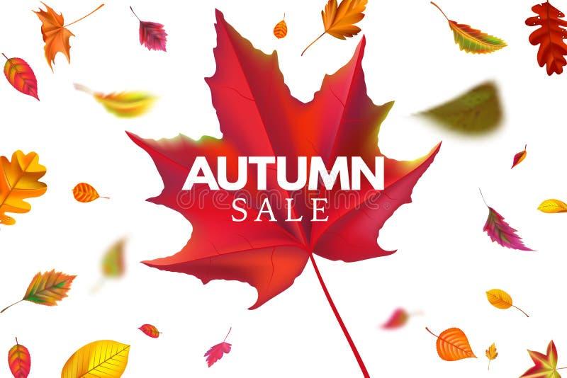 Banni?re de vente d'automne Calibre de ventes de saison avec les feuilles en baisse, la remise tombée de feuille et le vecteur au illustration de vecteur
